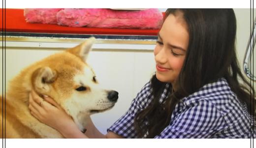 ビビット生出演でザギトワが秋田犬と戯れていてかわいい!質問よりも夢中