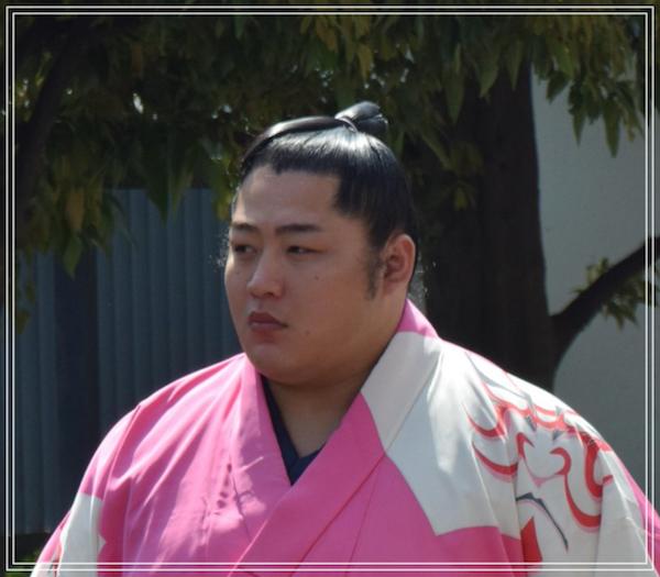 遠藤 相撲 結婚