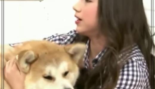 ザギトワの秋田犬がかわいそう?そもそも動物を贈呈するのがおかしい?