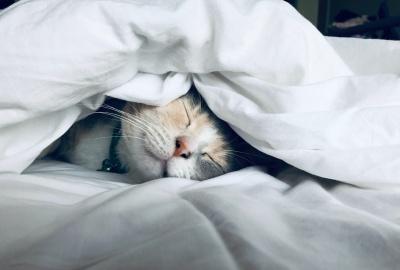 寝溜めに効果なしの理由は?快眠法はなに?睡眠に良くない行動とは